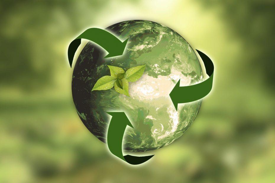 Ecologische relatiegeschenken